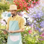 mature gardener using remote search in tablet whil DFBRCWX